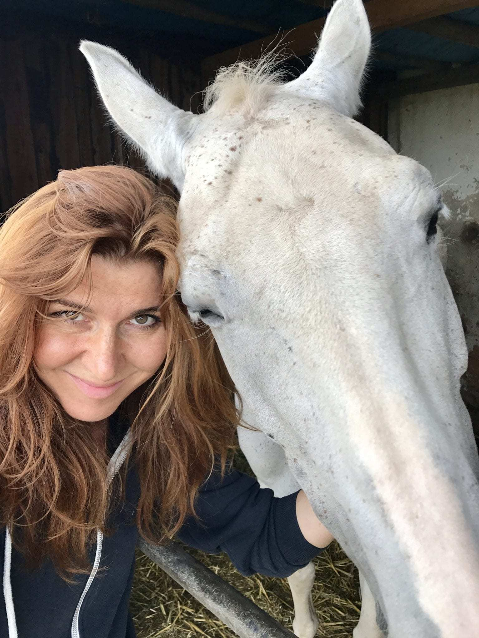 kůň má větší hlavu
